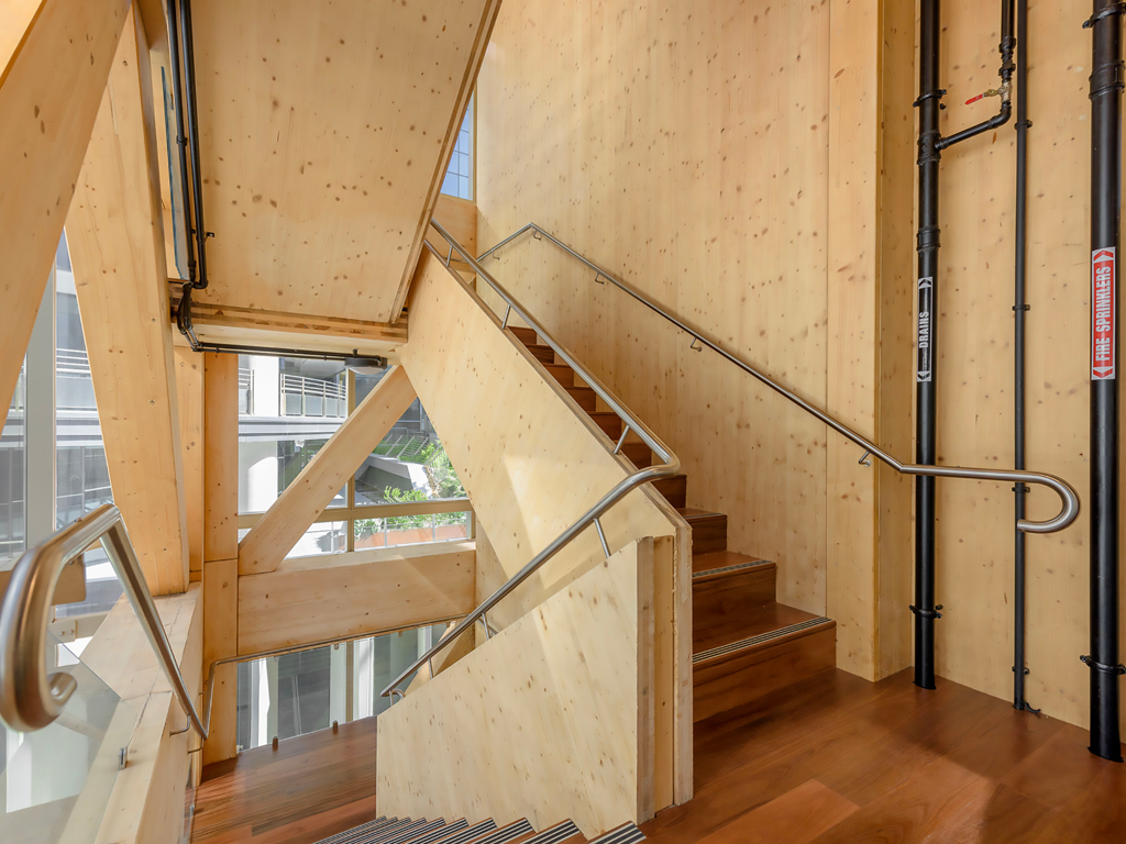 International House Sydney makes a virtue of timber's structural limitations.